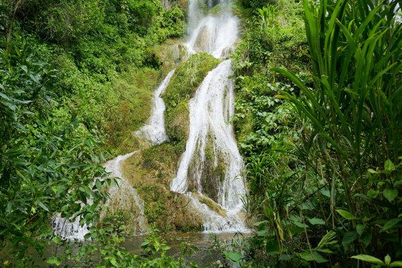 """Shutterstock"" nuotr./Guanayara nacionalinis parkas"