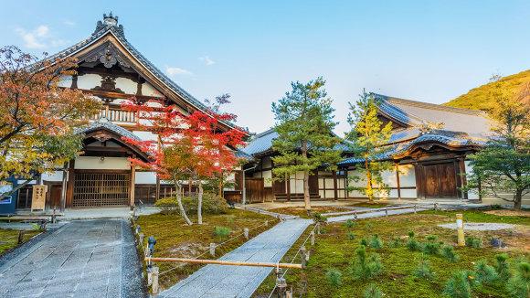Shutterstock.com nuotr./Kodai Ji