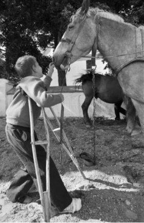 R.Požerskio nuotr./Kražiai, 1976