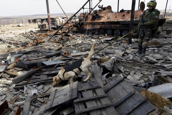 """""""Reuters""""/""""Scanpix"""" nuotr./Ukrainos specialiųjų pajėgų šuo ieško gyvųjų po apšaudymo prie Luhansko"""