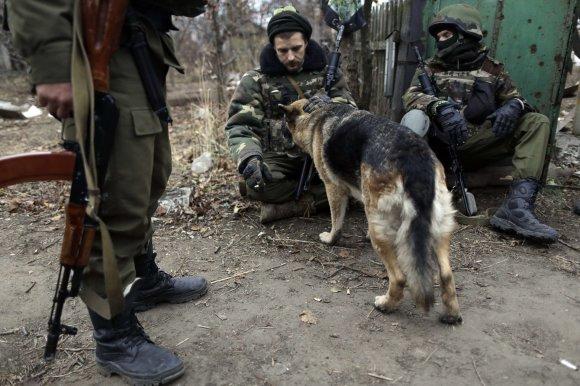 """AFP/""""Scanpix"""" nuotr./Ukrainiečių karių šuo Peskų miestelio griuvėsiuose"""