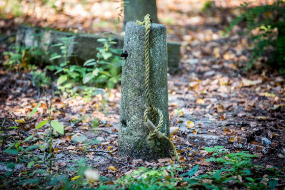 Vidmanto Balkūno / 15min nuotr./Išniekintos ir apleistos istorinės kapinės Varėnos rajone