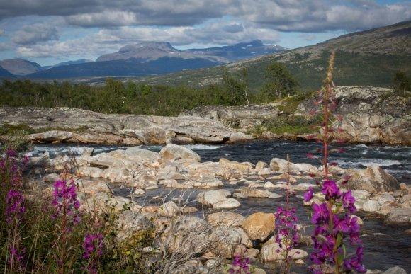 Vidmanto Balkūno / 15min nuotr./Šiaurės Norvegijos gamta