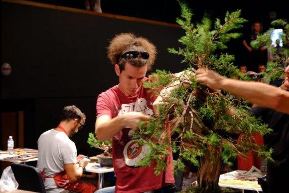 Juditos Judžiūnienės nuotr./Paskaita apie bonsai medelių formavimą