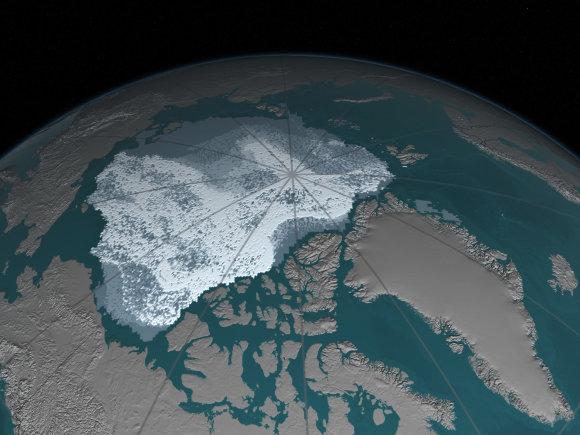 Arkties ledas 1984 m.