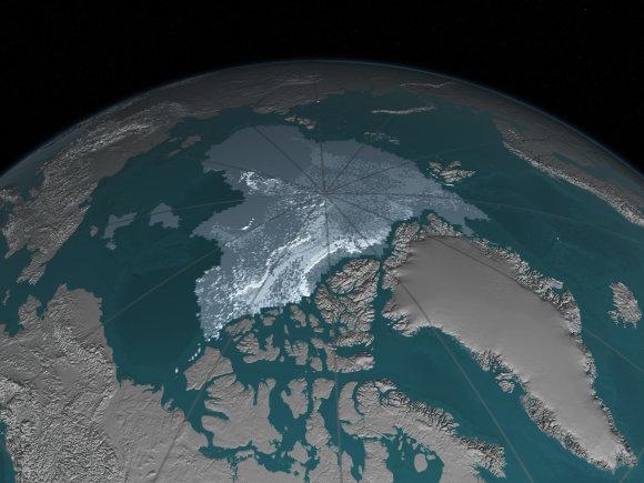 Arkties ledas 2016 m.