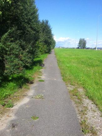 Skaitytojo Audriaus nuotr./Subyrėjo prieš pusmetį Kauno rajone įrengtas dviračių takas