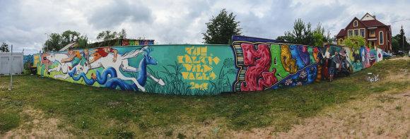 Projekto organizatorių nuotr./Projekto ,,The Baltic wild walls pristatymo akimirkos Zaraso pakrantėje