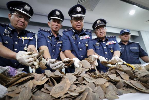 """""""Scanpix""""/AP nuotr./Malaizija konfiskavo beveik 1 mln. dolerių vertės retų gyvūnų dalių kontrabandos siuntą"""