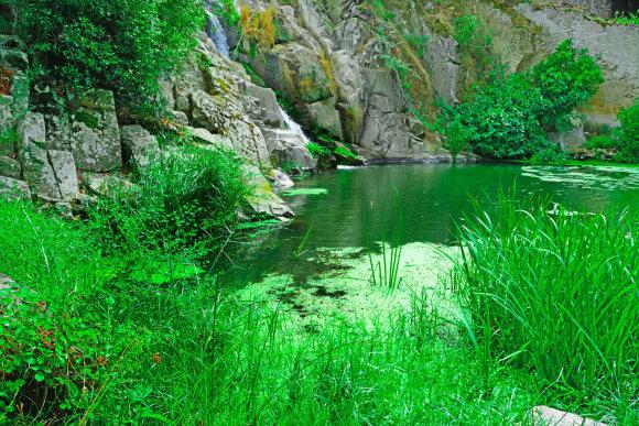 123RF.com nuotr./Sardinija