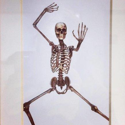 Asmeninio archyvo nuotr./Net skeletai čia linksmi ir šoka - Lauros aptiktas vaizdelis universitete