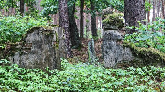 Karolinos Savickytės nuotr./H.Fischelio tėvų antkapiai senosiose žydų kapinėse Merkinėje.