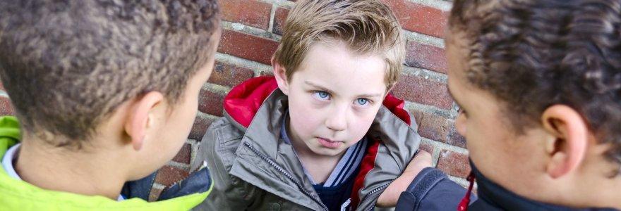 """""""Morkos"""" istorijos tęsinys: nepasidalinus kopos berniukas stovykloje buvo suspardytas"""