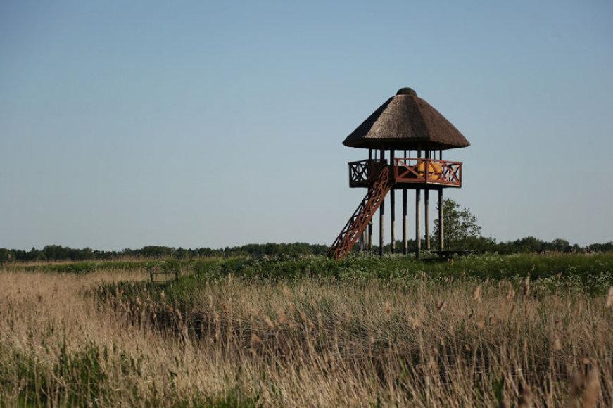 Rusnės apžvalgos bokštas