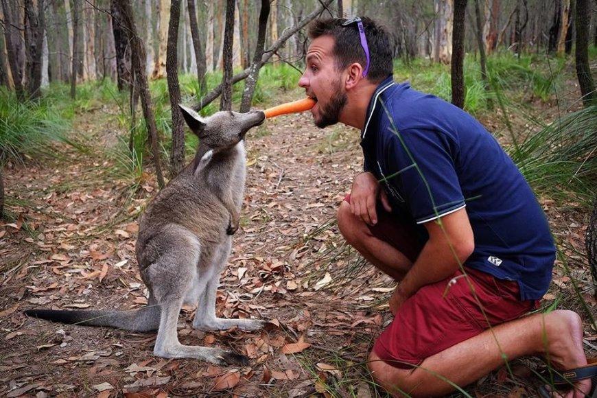 Asmeninė nuotr./Karolis Žukauskas ir kengūra Australijoje