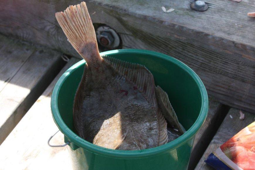 Žvejai džiaugėsi sugavę plekšnių.