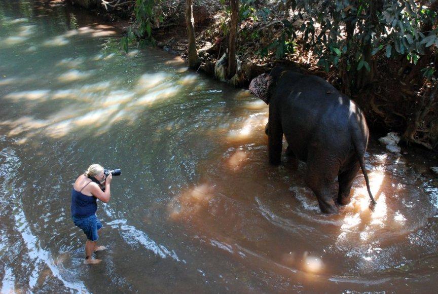 Kai kurie turistai užsisako asmeninę dramblio maudynių fotosesiją