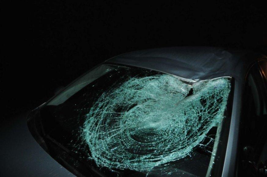 Briedis prie Vilniaus sukėlė masinę avariją