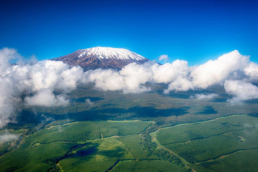 Shutterstock.com/Kilimandžaras