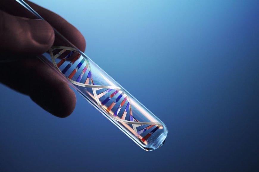 DNR grandinė mėgintyvėlyje