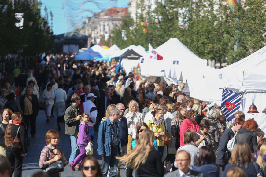 "Festivalio ""Sostinės dienos 2013"" akimirka"