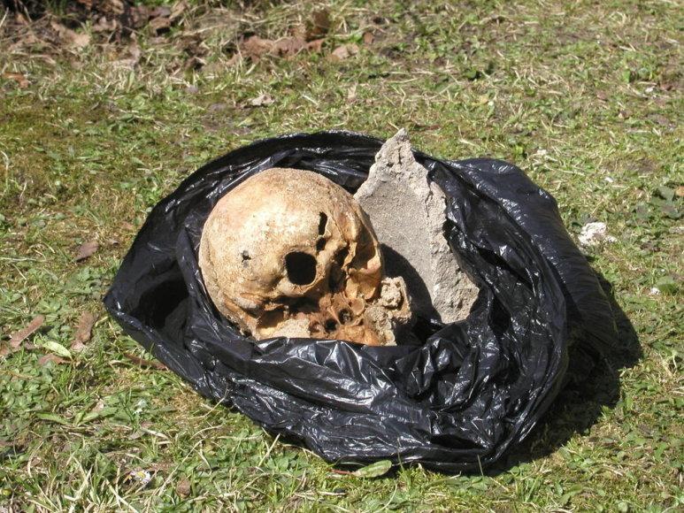 Kaukolė buvo įmūryta tarp tvoros akmenų