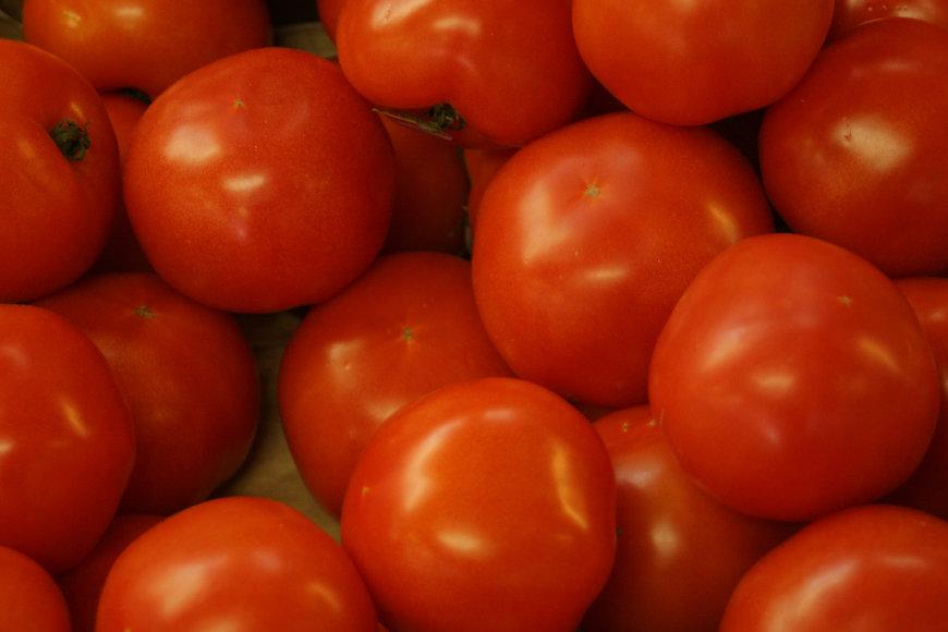 Pomidorai kasdien