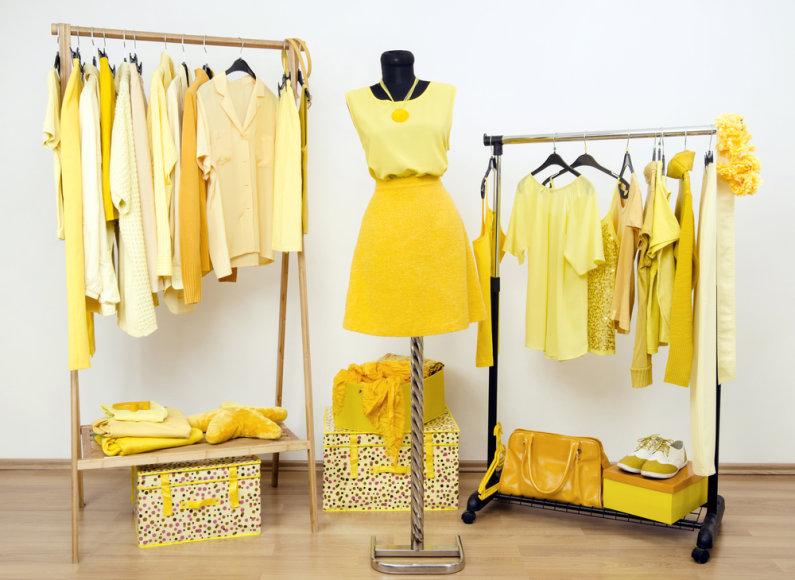 Geltona drabužinė.