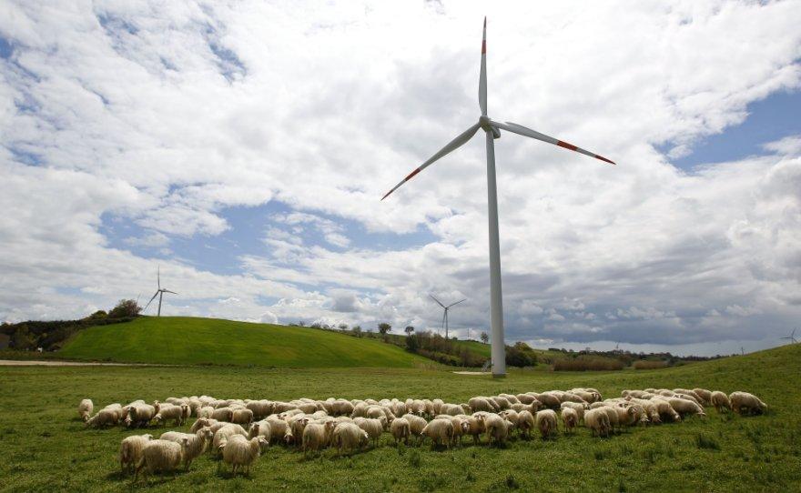 Vėjo turbinos