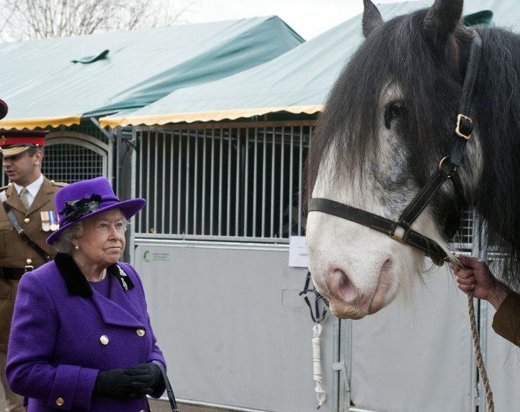 Karalienė Elžbieta lankosi britų kariuomenės žirgyne