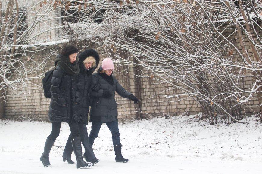 Žiemiški orai vis labiau įsitvirtina.