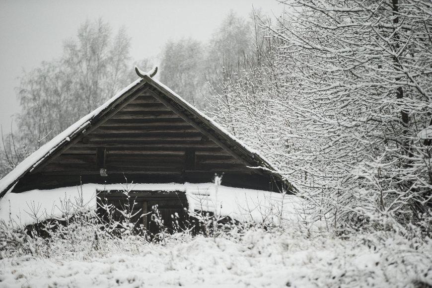 lapkričio sniegas