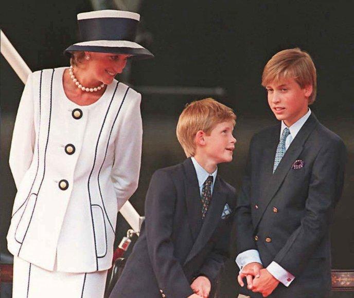 Princesė Diana, princas Harry ir princas Williamas (1995 m.)