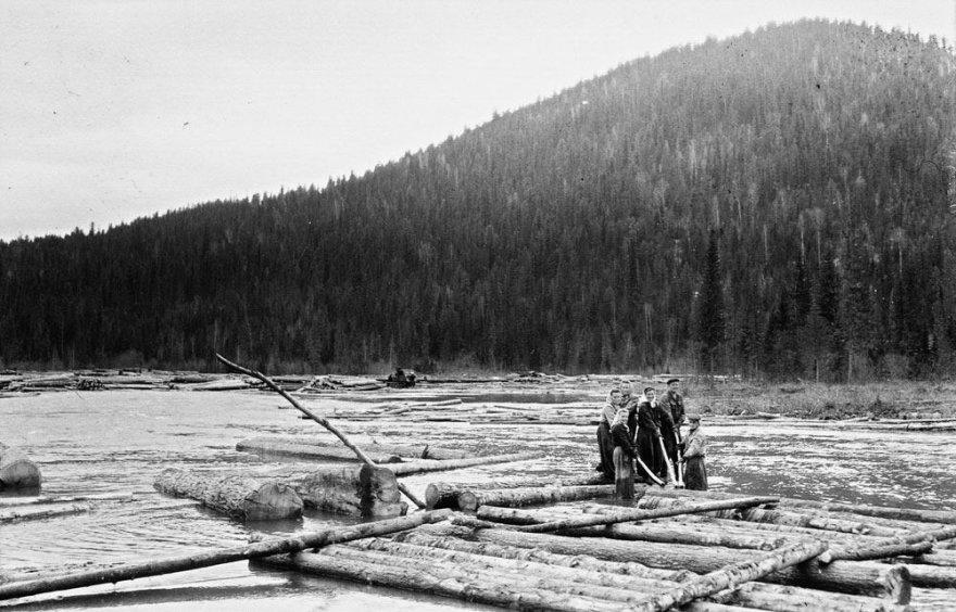 Lietuviai tremtyje. Tubilio upe tremtiniai plukdo sielius. Tubilis, Daursko r., Krasnojarsko k., 1955 m.