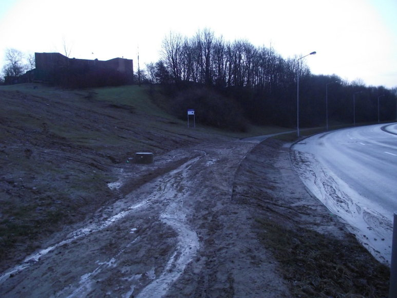 Šiaurės prospektas Kaune (Antano Miškevičiaus nuotr.)