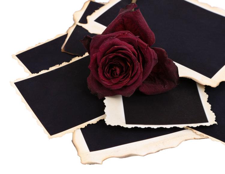Juoda rožė