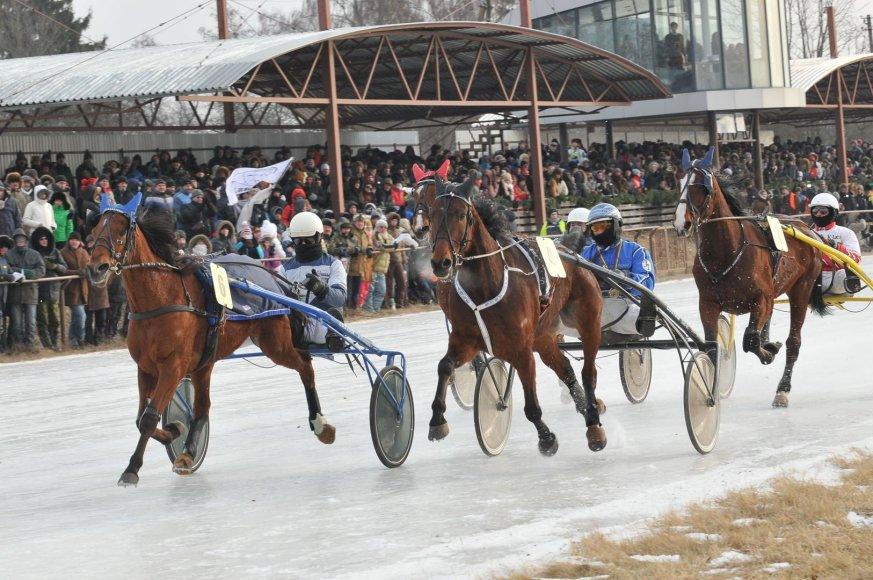 """Žirgų lenktynės """"Sartai 2014"""" 2014 m. vasario 01 d."""