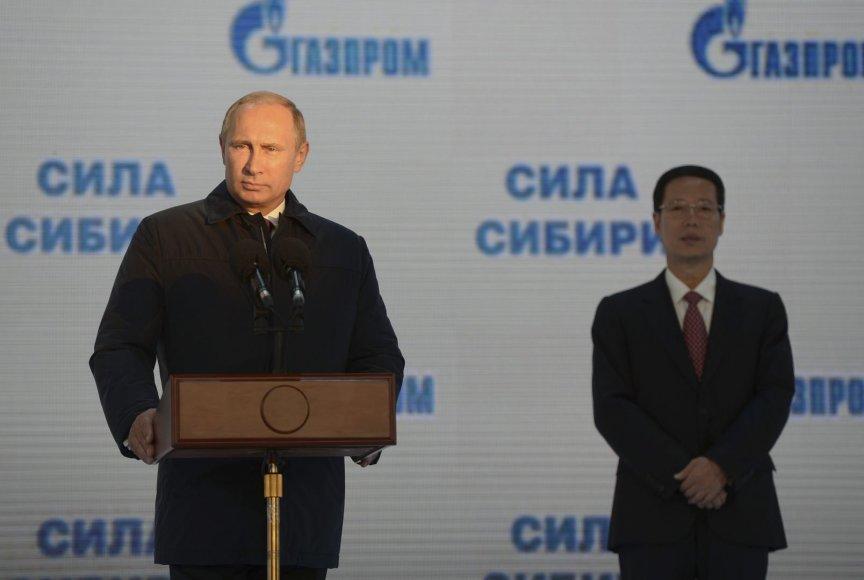 Rusijos prezidentas Vladimiras Putinas ir Kinijos vicepremjeras Zhang Gaoli