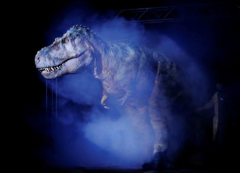 Japonijoje rengiami pasirodymai su 8 metrų ilgio dinozauru-robotu