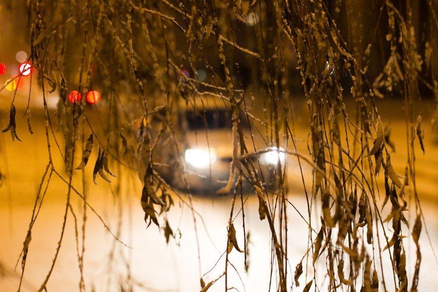Vilniaus Šiaurės miestelis pasipuošė sniegu