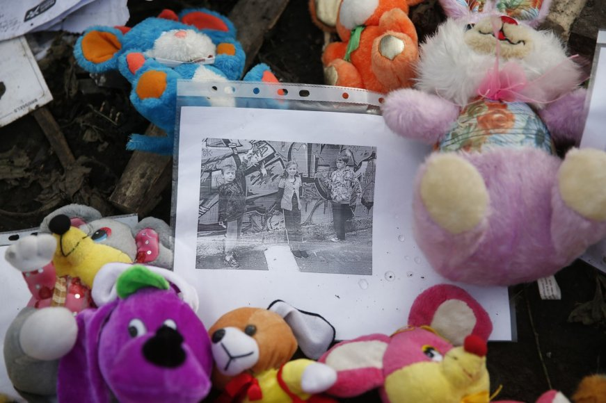 """Malaizijos lėktuvo """"Boeing 777"""" katastrofos vieta rytų Ukrainoje"""