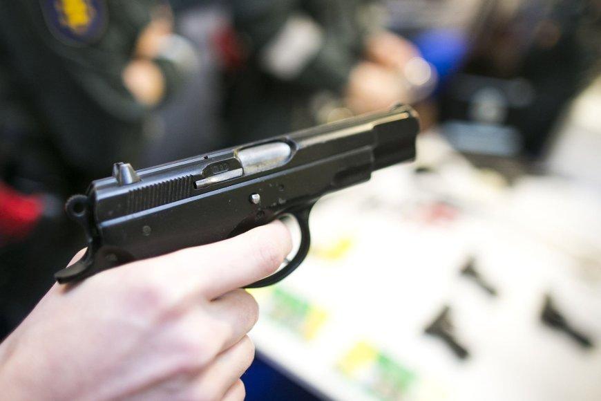 """""""Litexpo"""" parodoje dingo demonstruojamas ginklas"""