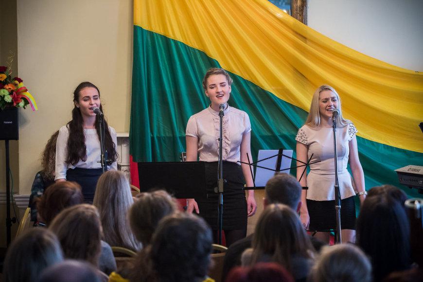 """Labdaros projektas """"Lietuva-Airija 2013"""""""