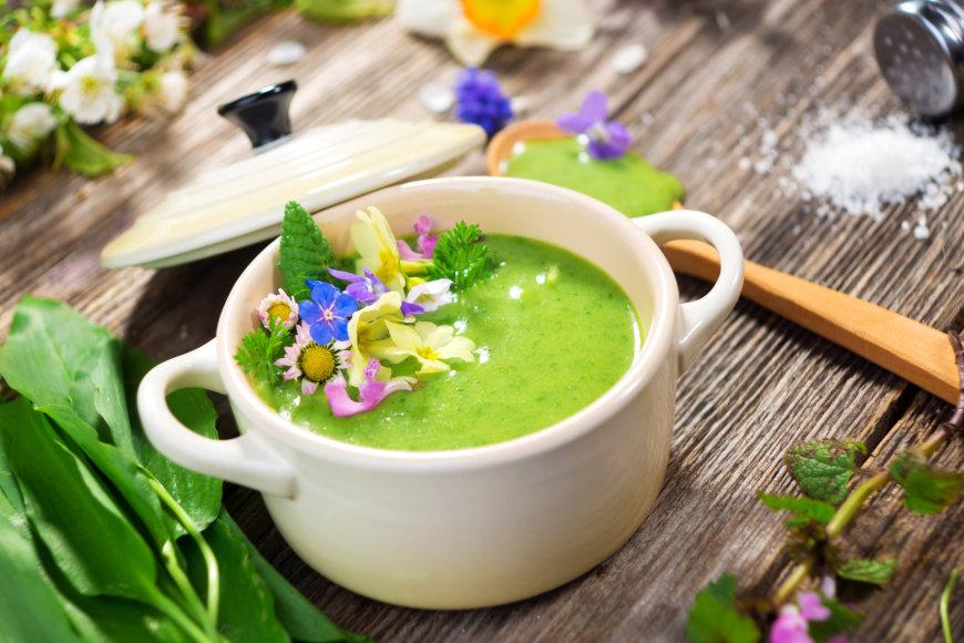 Pavasarinė sriuba su žolelėmis