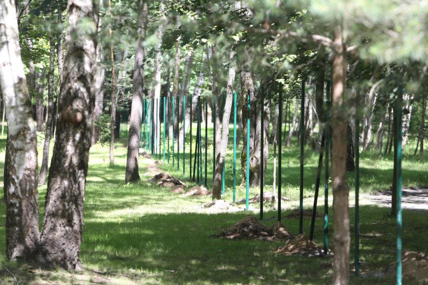 Burbiškių gatvėje tveriamas miškas