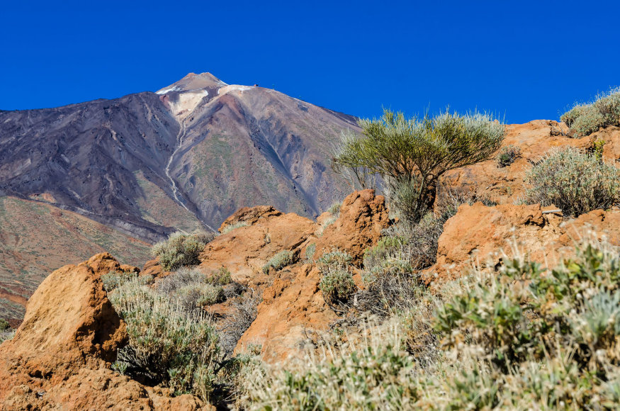 Teidės ugnikalnis Tenerifėje
