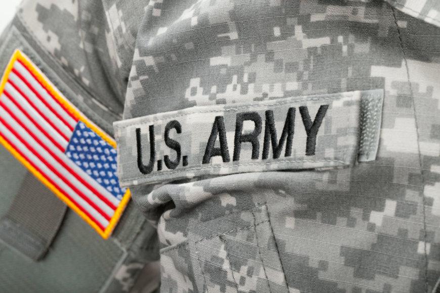 JAV karys