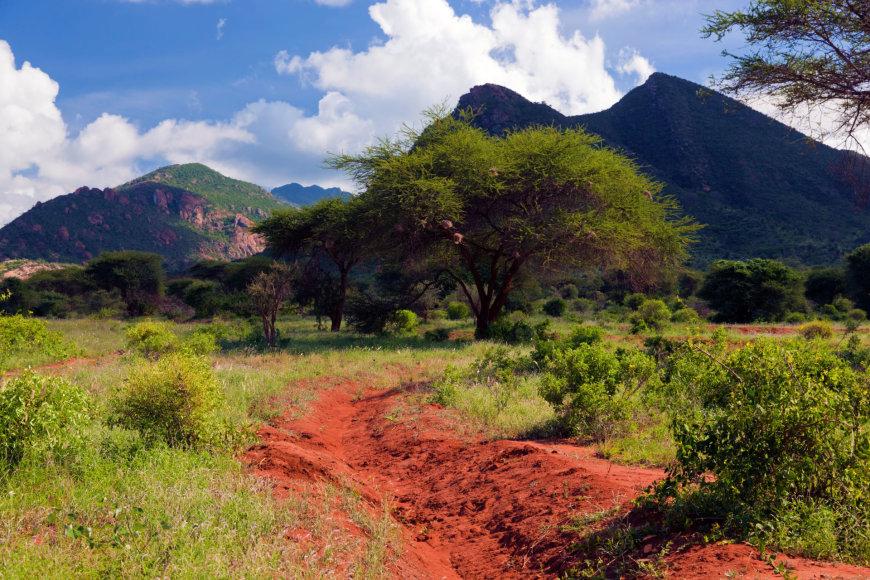 Ryškiaspalvė Kenija