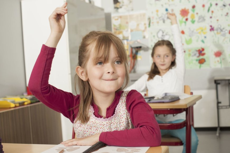 Vida Press nuotr./Vaikai mokykloje
