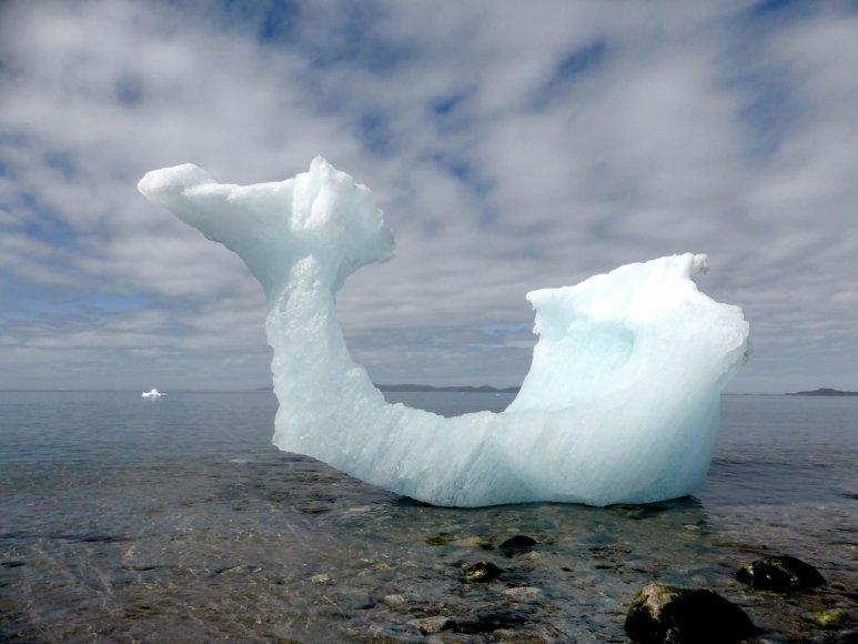 Nykstantys Grenlandijos ledynai